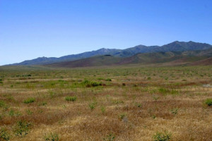 thnv_40acres_ranchsite
